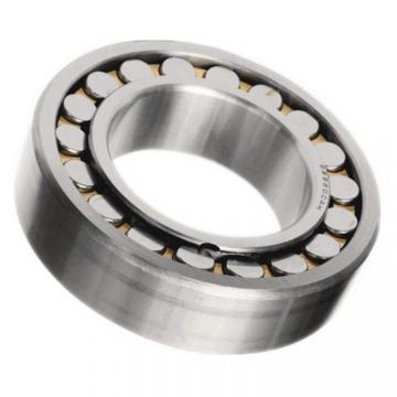 Stock BS 22220 21310 W33c3 Roller Bearing with Polymer Shields -30 Degrees