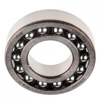 NSK SKF NTN Koyo Self Aligning Ball Bearing (1200 1201 1202 1203 1204 1205 1206 1207 1208)