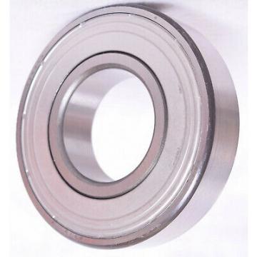 SKF Bearing, Ball Bearing, Single Row Double Row Brass/Steel/Nylon Cage Self-Aligning Ball Bearing 1206/1207/1208