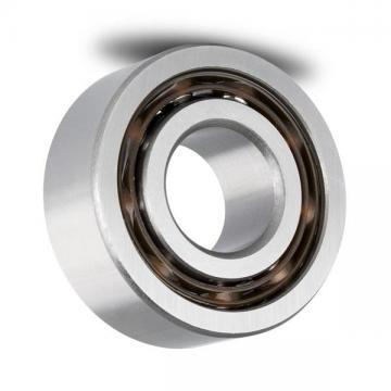 Chrome Steel Gcr15 Long Life 35*100*25mm Cylindrical Roller Bearing NJ407